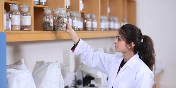 Laboratories (15)